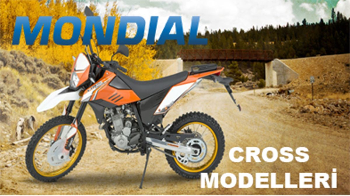 Mondial Cross Modeller